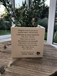 Personalised Flower / Plant Pot In Memory Loved One MUM Memorial MAM OR ANY NAME